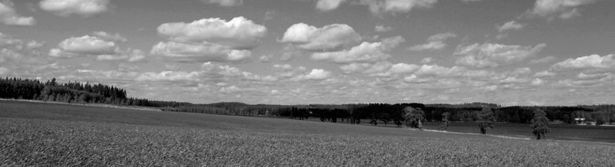 Picture of black and white landscape